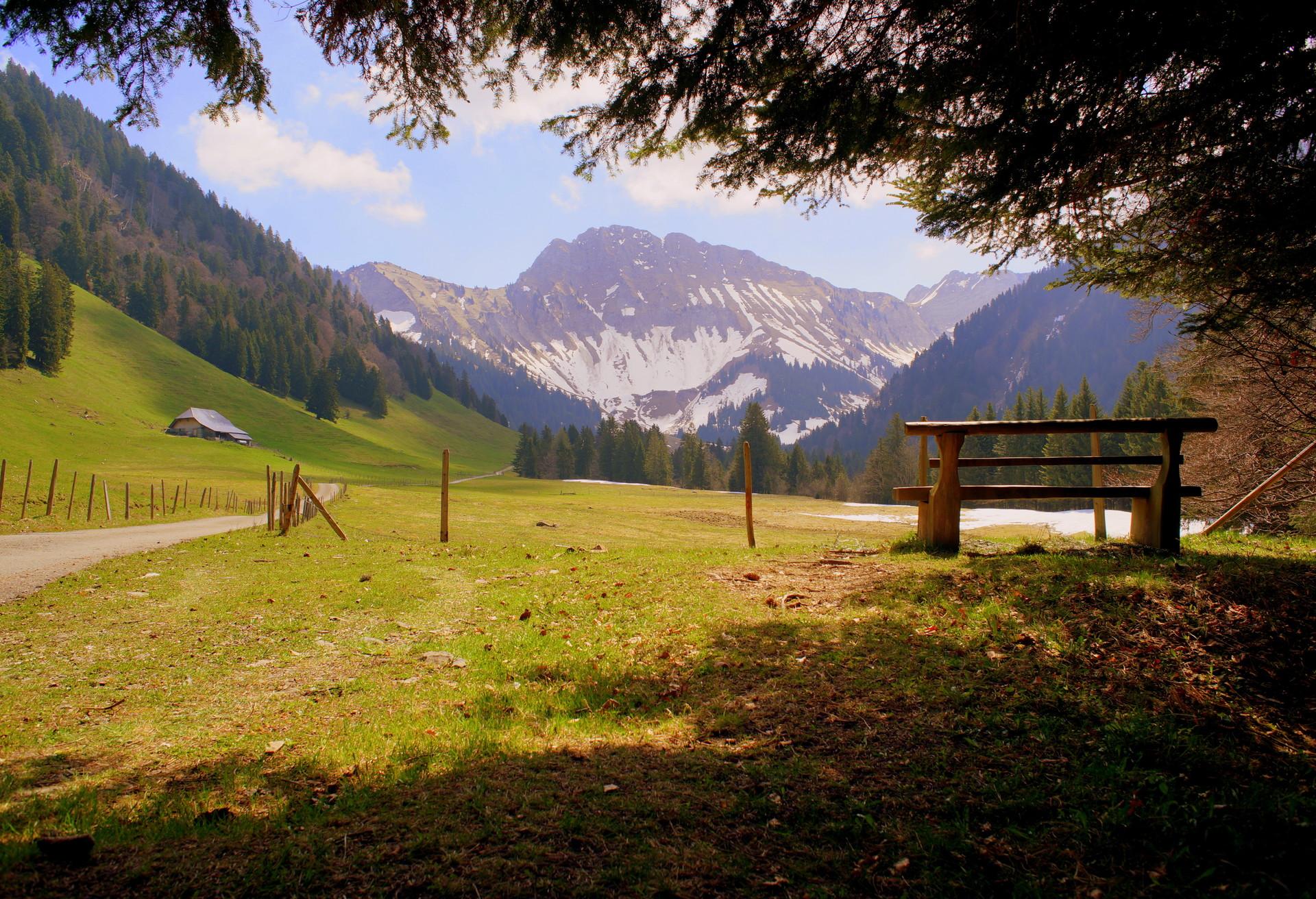 Évadez-vous dans les Alpes fribourgeoises depuis les Paccots