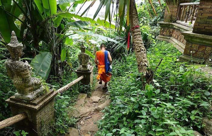 Marcher le long du sentier des moines à Chiang Mai